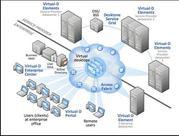 IT Virtualization and Cloud Service