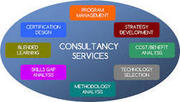 IT Information Systems Consultancy